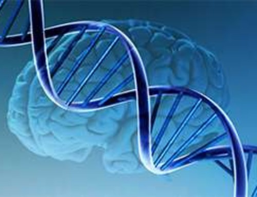 Effetto di APOE e varianti genetiche comuni sul rischio d'insorgenza della malattia di Alzheimer