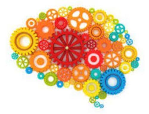 Associazione tra riserva cognitiva e declino cognitivo