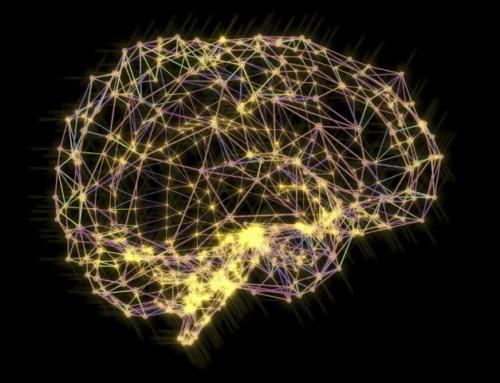 Alzheimer, ecco come la proteina Tau si diffonde tra i neuroni