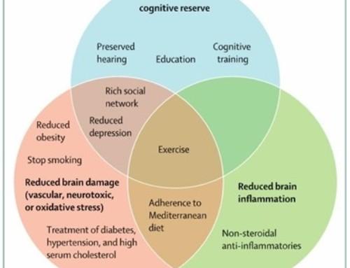 Siamo davvero consapevoli di quali siano i fattori di rischio e protezione associati al rischio di demenza?