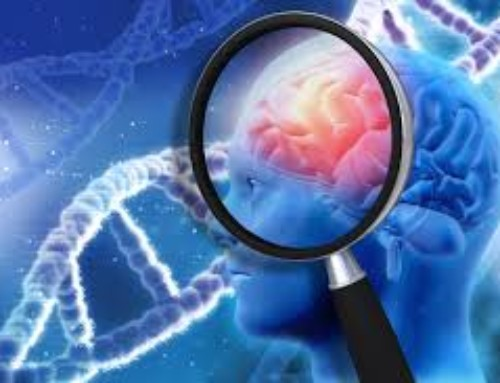 Intestino e Alzheimer: prevenire è meglio che curare!