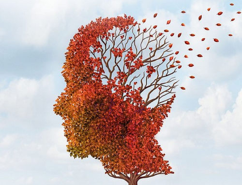 Organizzazione Mondiale della Sanità: linee guida per ridurre il rischio di demenza